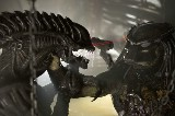 Alien vs Predator Survival of the Fittest AVP Alien Vs. Predator 2